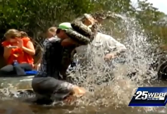 Tour Guide Wrestles 10ft Python In Florida Everglades