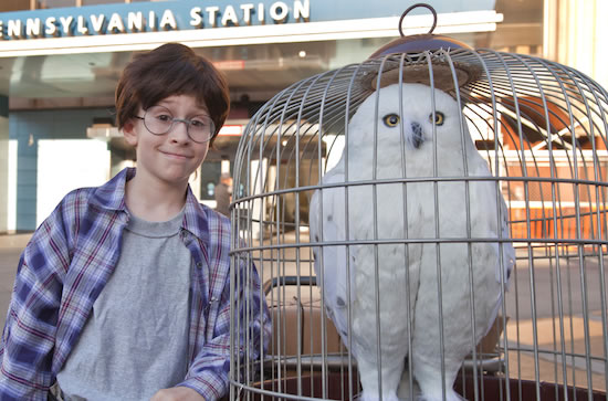 Real-Life Harry Potter Searches For Train To Hogwarts