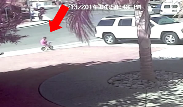 Latest Viral: Cat Saves Boy From Attacking Dog