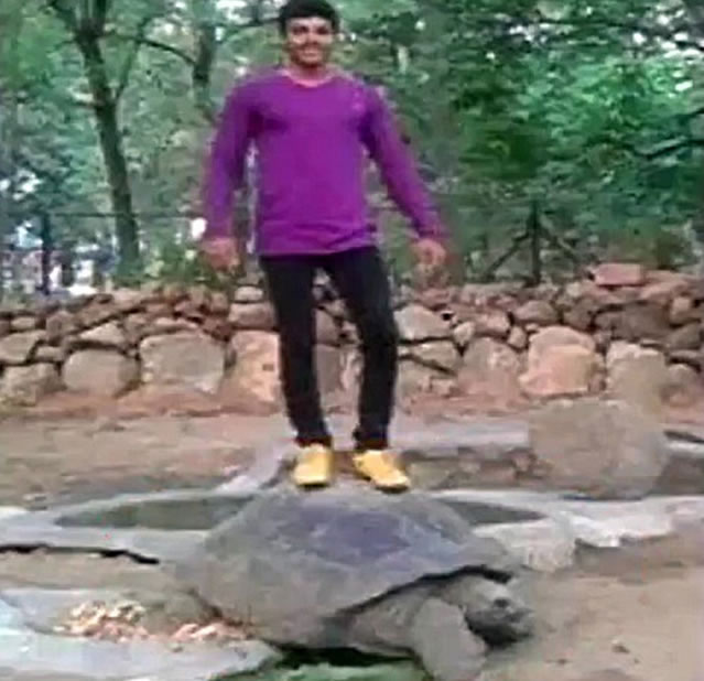 man-stands-on-120-year-old-tortoise